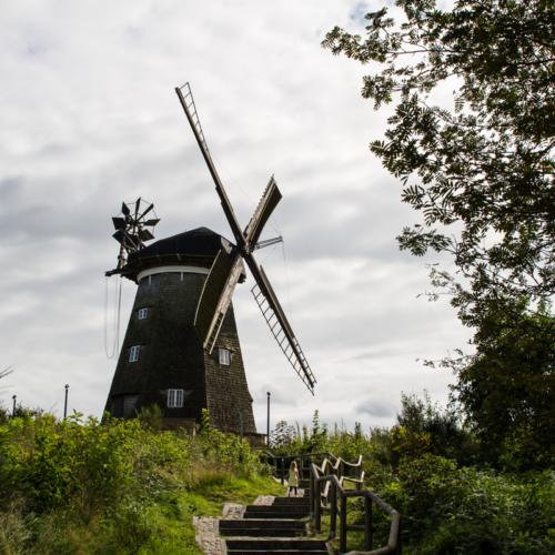 Holländer Windmühle Usedom